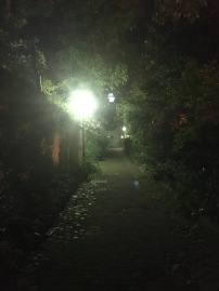Most haunted alley in Charleston.